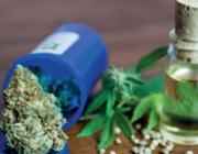 CBD-olie: hype of medicijn?