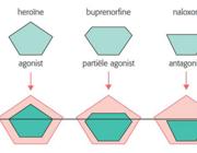 Buprenorfine/naloxon